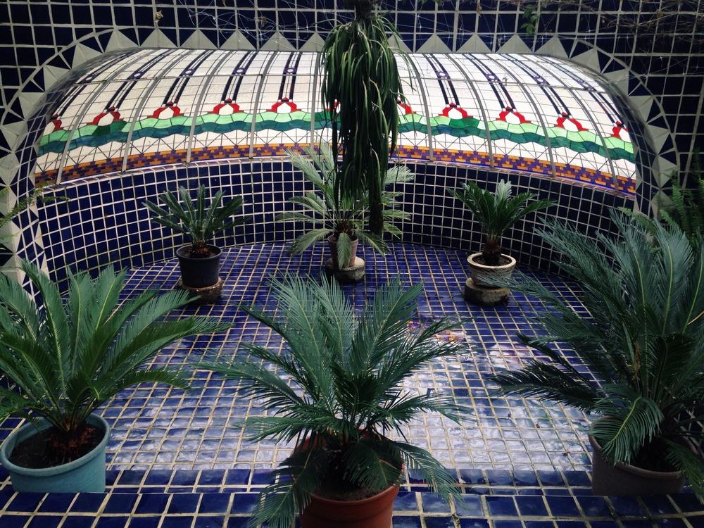 Vanhalam in Kaarem at Jardín de Botánico