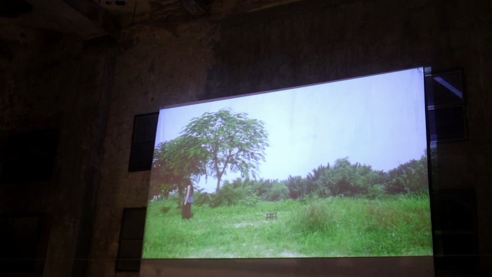 Lena in ARRAY 1 to 9, a video installation by Andinh Ha